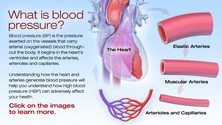 blood pressure and the heart Heart and blood pressure if you are above 40 years and have attended any kind of medical opd for whatever problem it may have been, you would've high blood pressure is directly related to heart problems increased blood pressure increases the strain on the heart and results in cardiac problems.